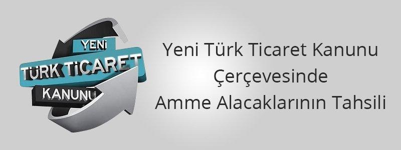 Yeni Türk Ticaret Kanunu Çerçevesinde Amme Alacaklarının Tahsili